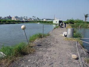 釣り場の足場