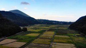 大室山と池の田んぼ