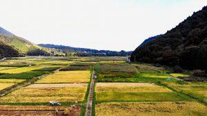 谷間に広がる田畑